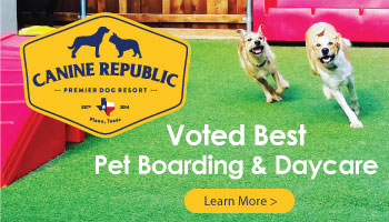 Best of Plano 2018 – Canine Republic