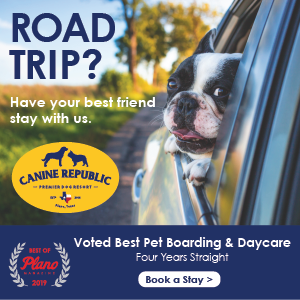 Canine Republic – Road Trip